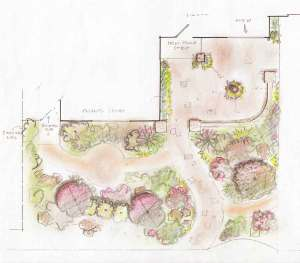 Albright-Souza Garden Design Concept Sketch for Lawn-less Front Yard
