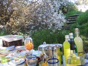 Plum Blossom Picnic