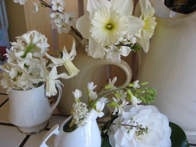 Creamy blossoms