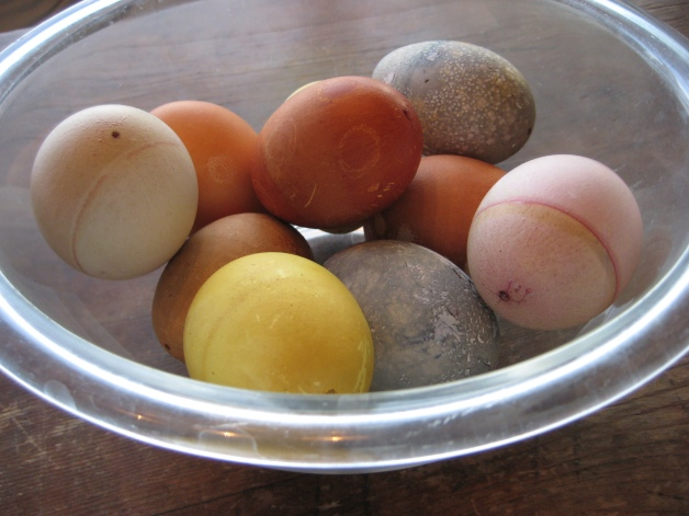 Naturally dyed eggs perjoy
