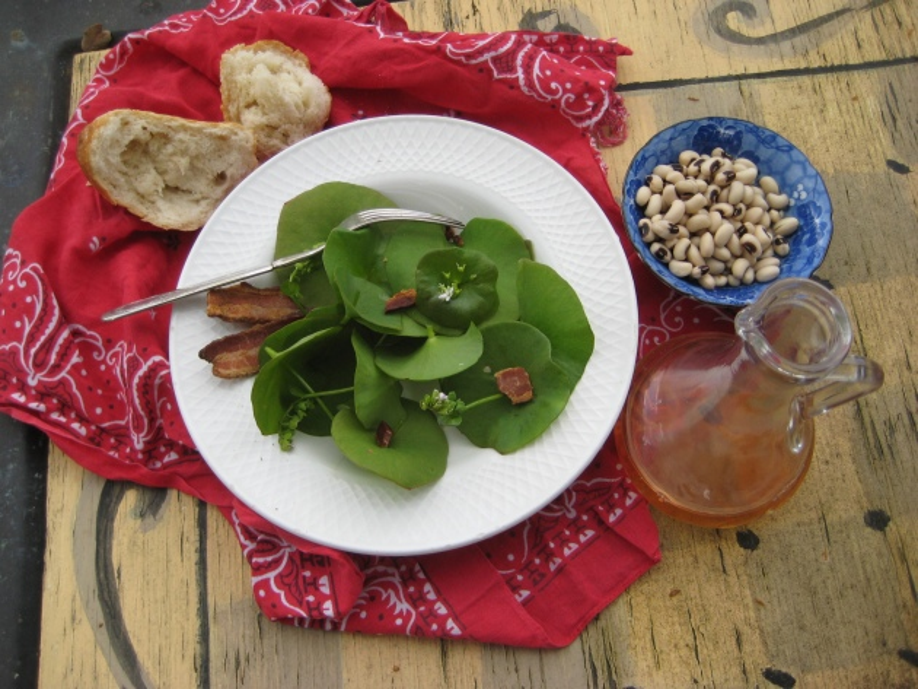 Albright-Souza Miner's Lettuce Simple Meal 2211