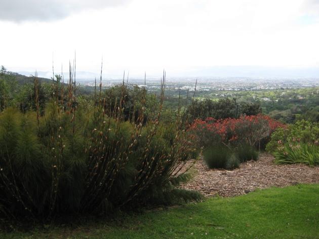 AlbrightSouza Kirstenbosch Views of Cape
