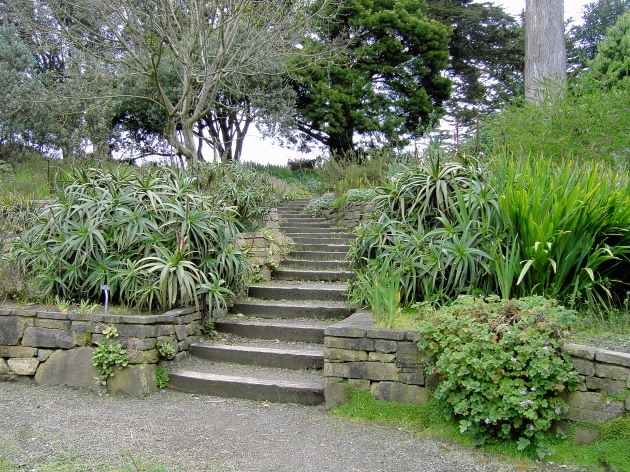 AlbrightSouza South Africa Section SF Botanical Garden 3881
