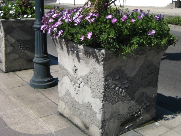 Albright-Souza Chile Concrete Planter