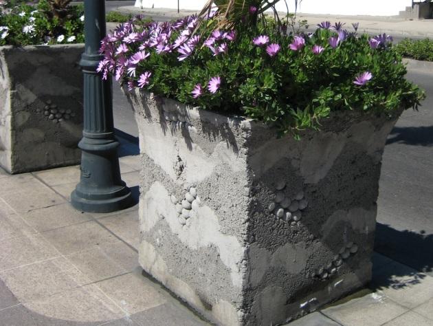 Albright-Souza Chile Concrete Planter
