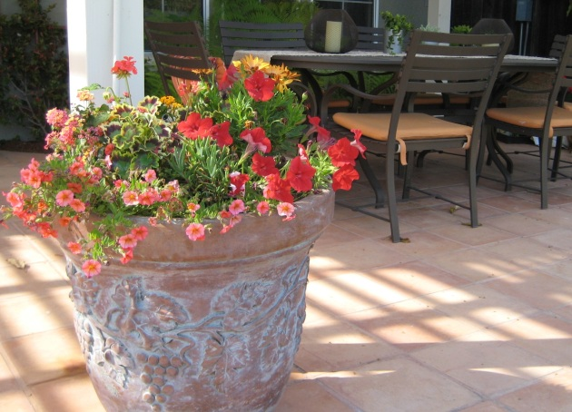 Albright-Souza Tuscan Style Pot