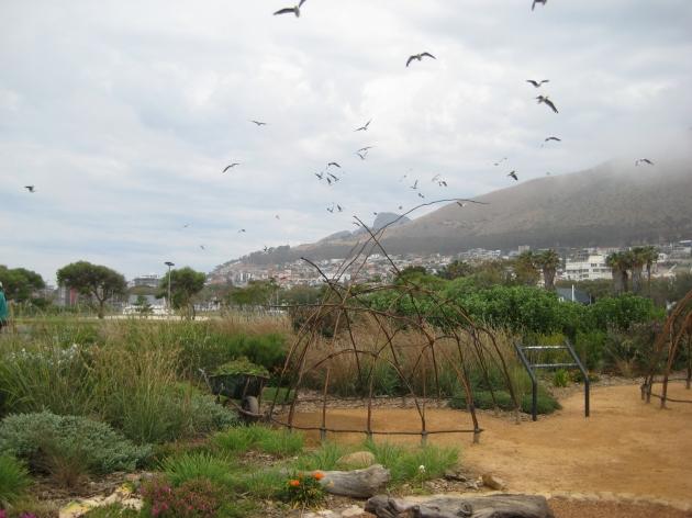 Green Point Biodiversity Garden