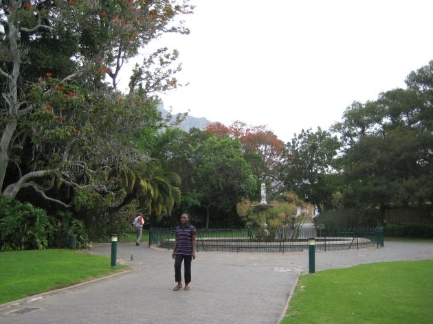 Companys Gardens Cape Town