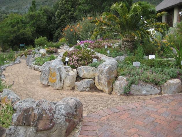 Kirstenbosch South Africa