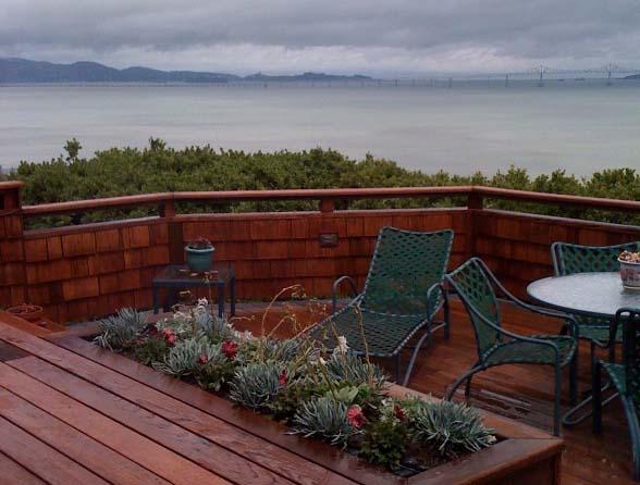 blue succulent deck planter