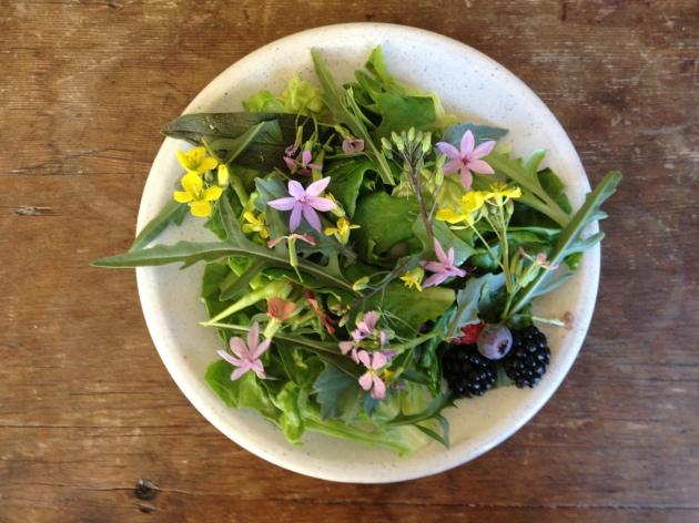 edible flower salad with berries