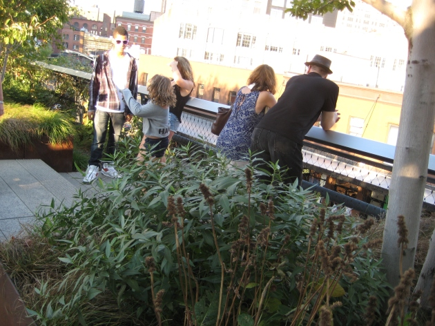 High Line viewing