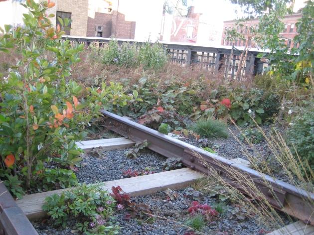 High Line rails and plants