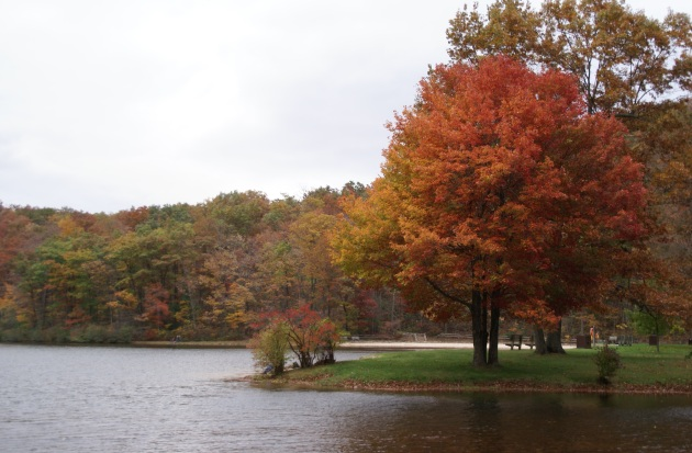 fall lake Virginia