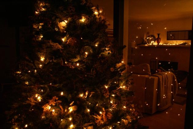 lighted Christmas tree reflection