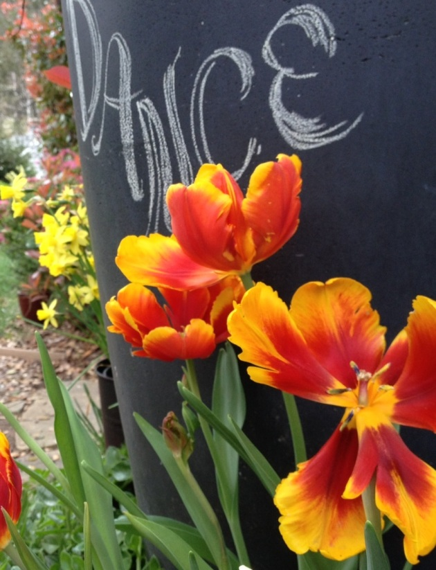 tulips vertical chalkboard dance