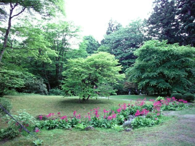 Tamozawa Garden stream