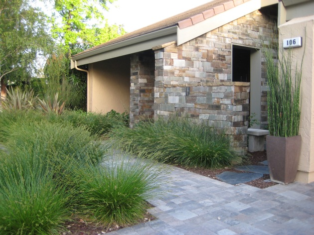 modern landscape entry with pavers and carex