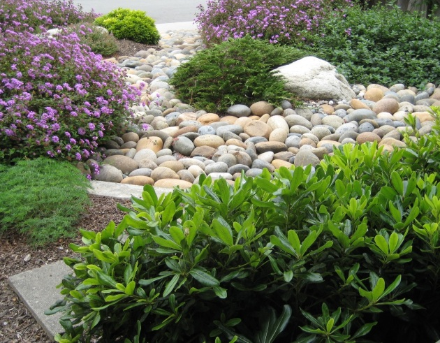 Drought tolerant beachy landscape with cobbles and stone
