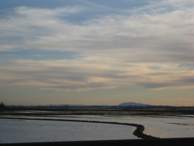dusk at Suisun Marsh