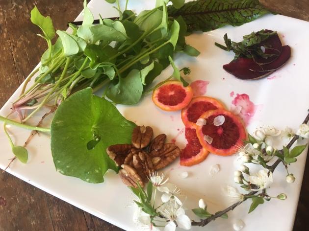 blood orange minor's lettuce salad plate