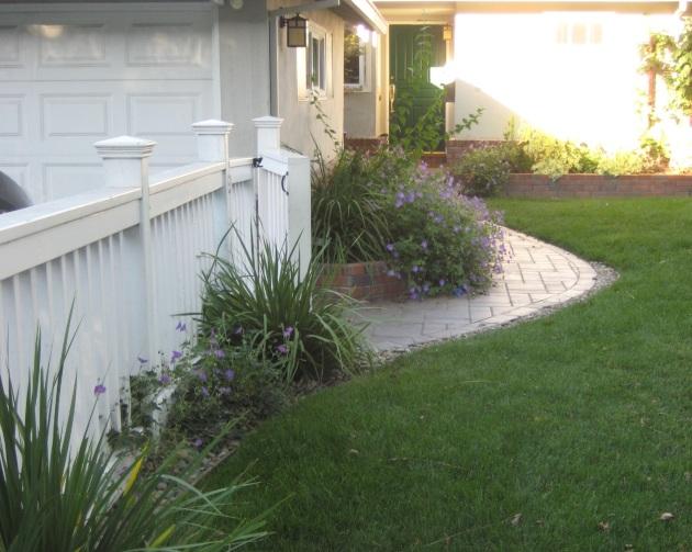 geranium rozanne blue with paver path