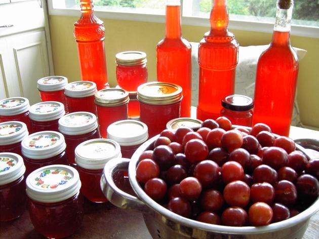 fruit preserve shrub syrup vinegar jam