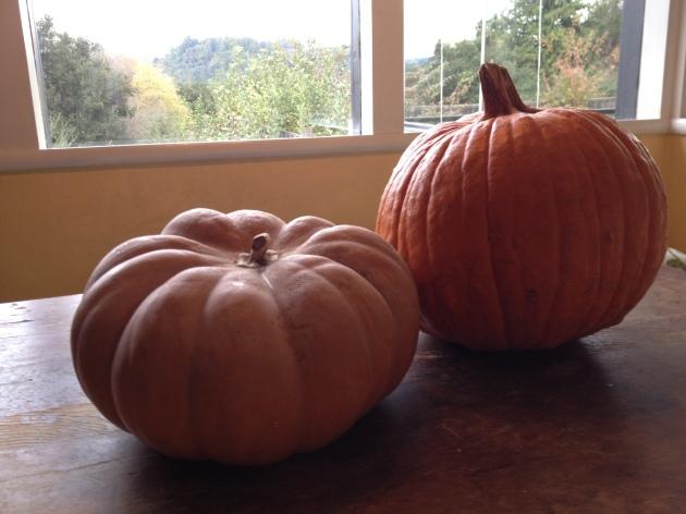 pumpkin duo cinderella backlight