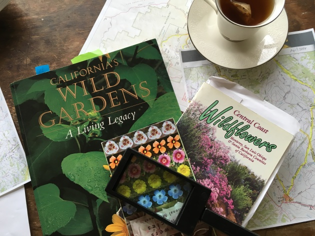 wildflower books