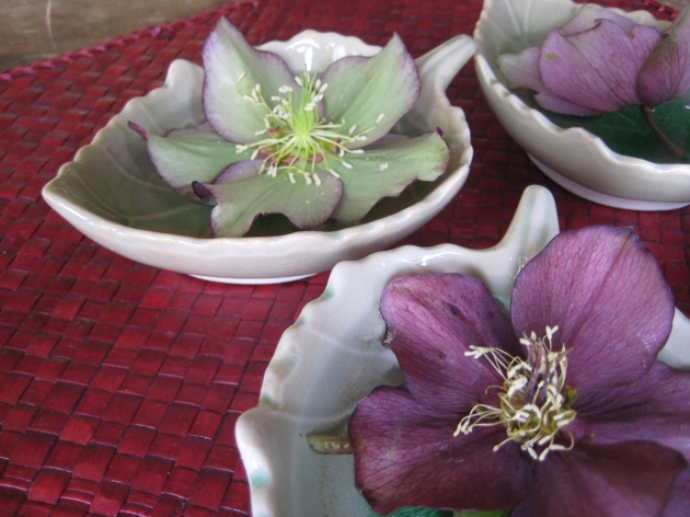 Hellebore blossoms floating