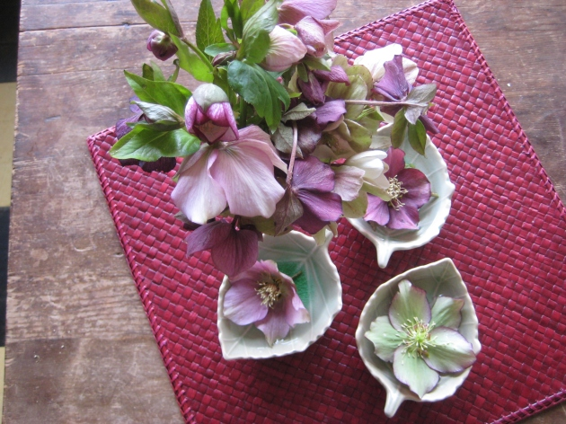 Hellebore vase and floating