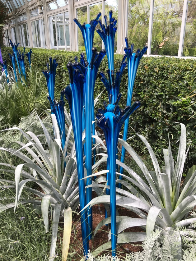 chihuly silver foliage